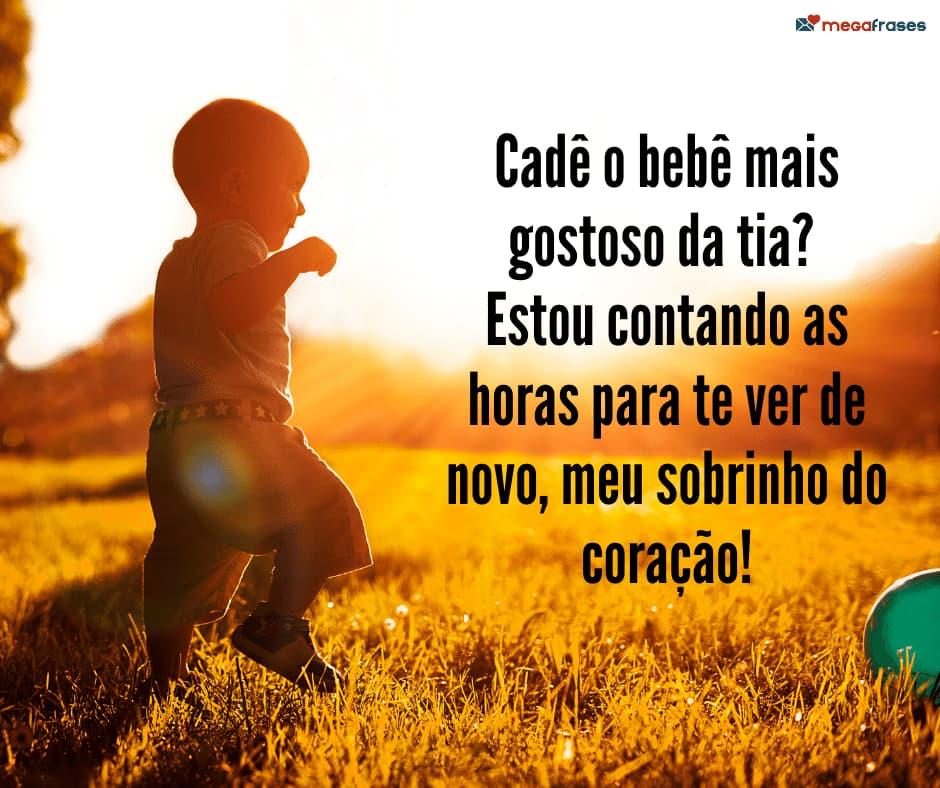 megafrases-titia-coruja-sobrinho-bebe