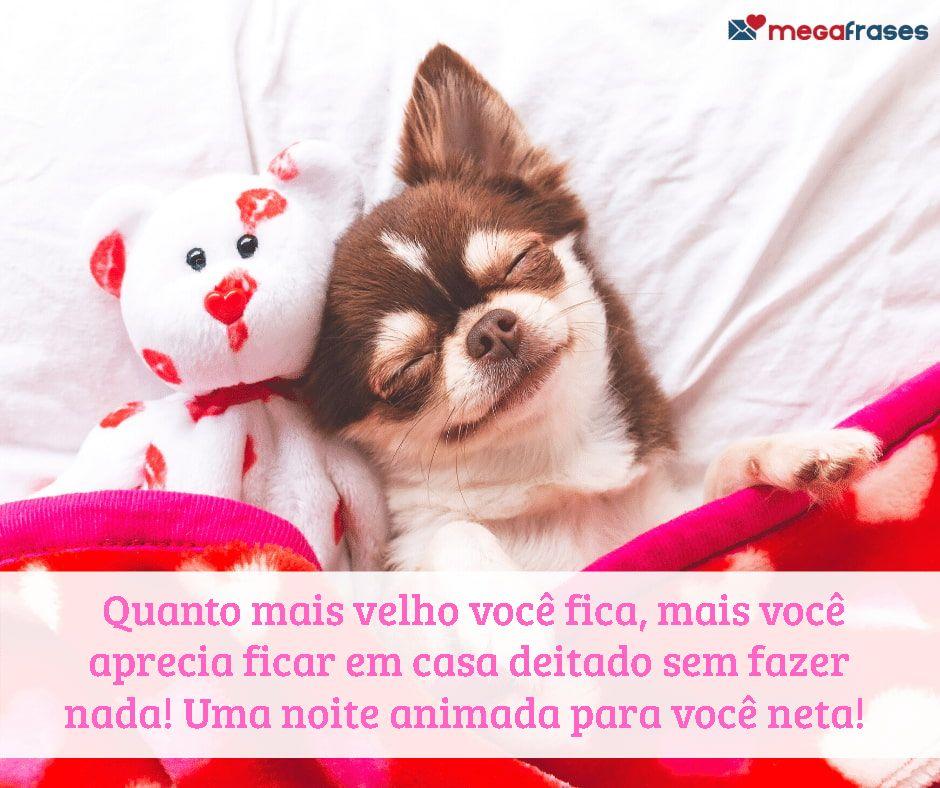megafrases-boa-noite-neta-para-whatsapp