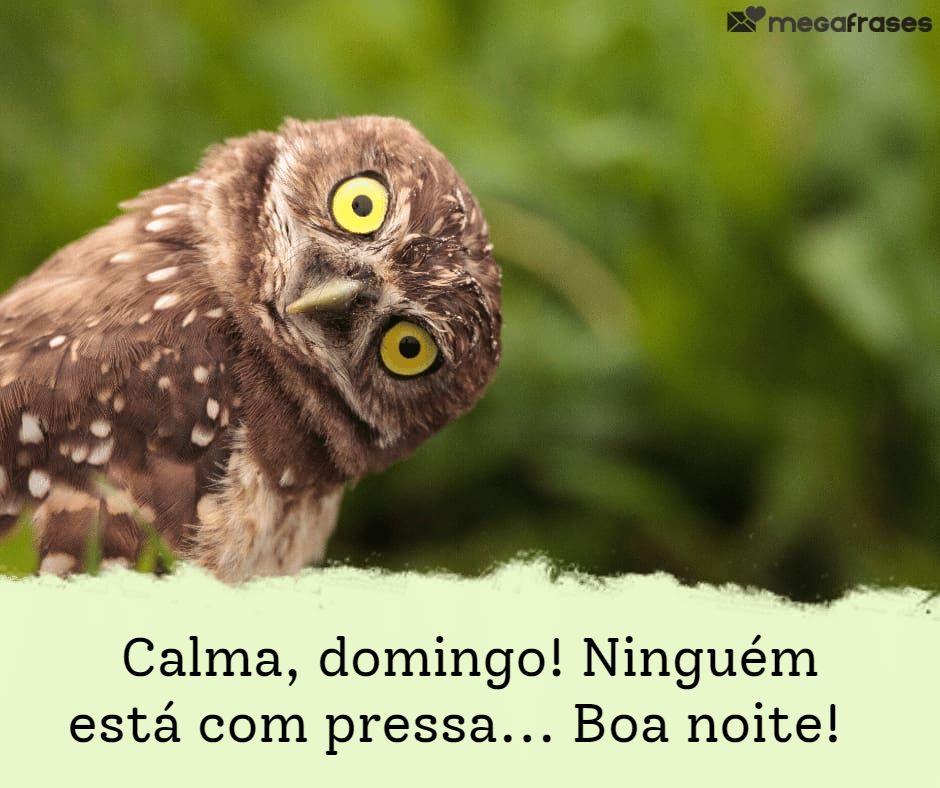 megafrases-boa-noite-domingo-para-status