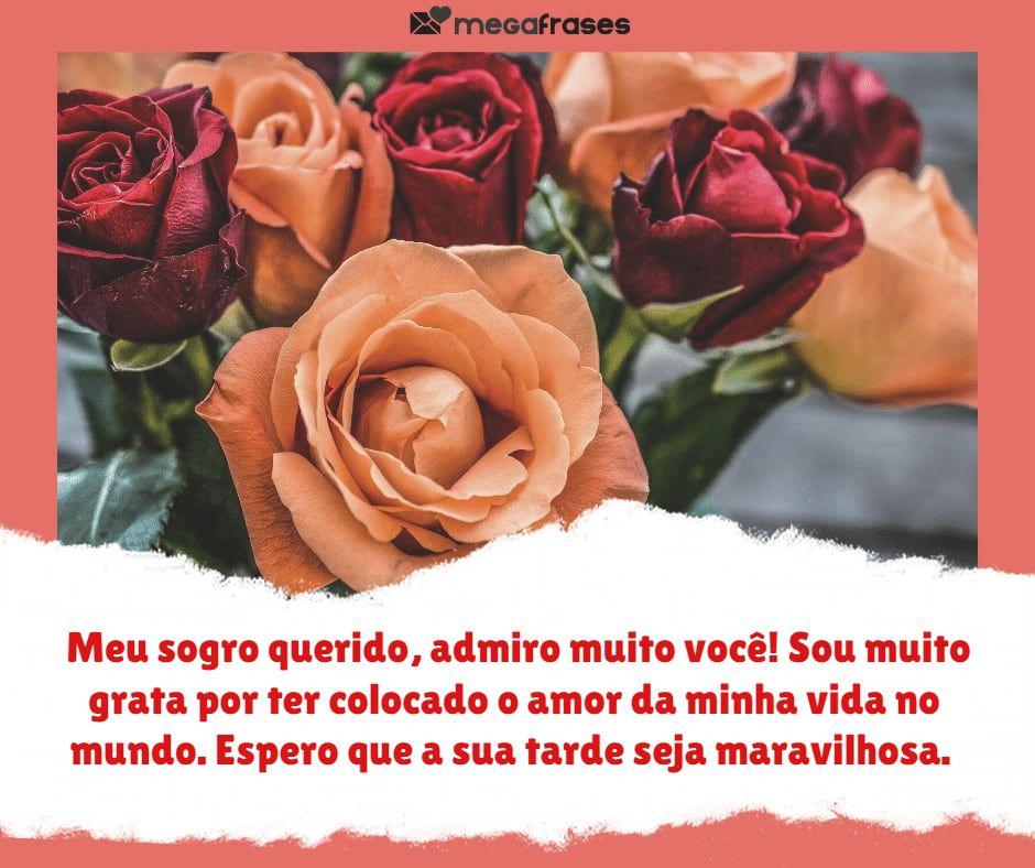 megafrases-boa-tarde-para-sogro-facebook