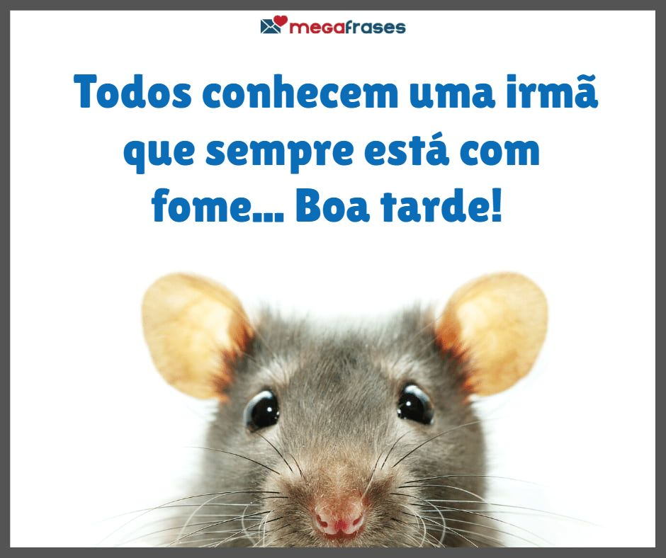 megafrases-frase-de-boa-tarde-biblicas-para-stories-do-facebook