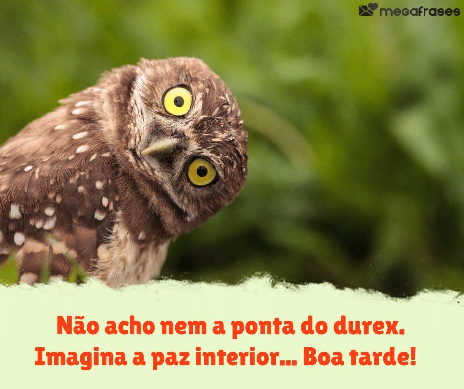 megafrases-frase-de-boa-tarde-namaste-para-stories-do-facebook