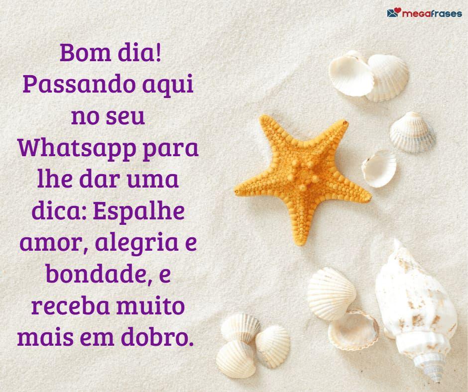 megafrases-mensagem-bom-dia-para-enviar-whatsapp