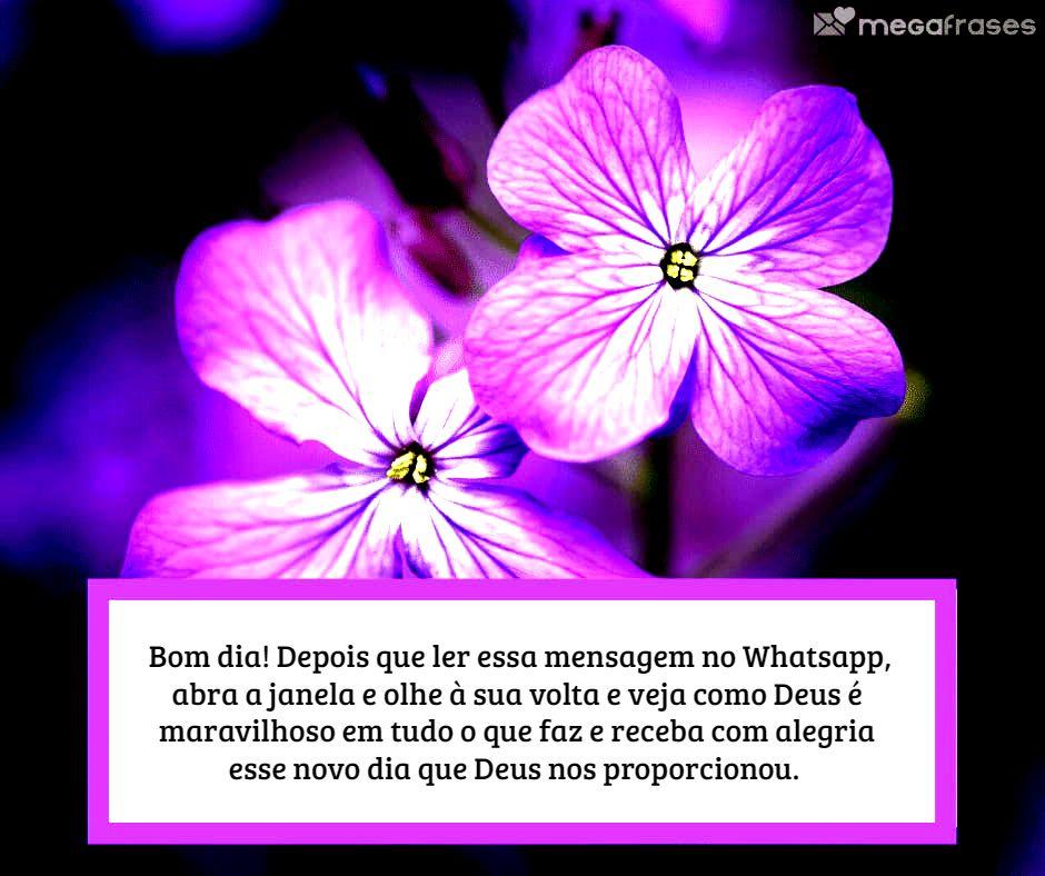megafrases-mensagem-catolica-para-bom-dia-no-whatsapp