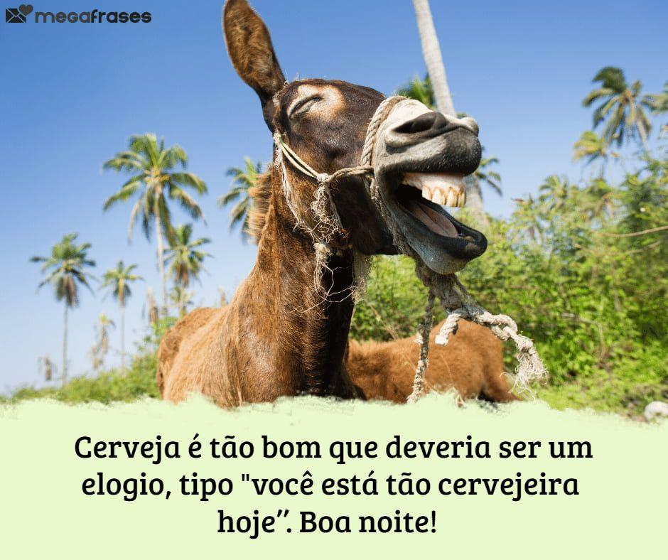 megafrases-frase-engracada-de-reflexao-para-boa-noite-no-status-whatsapp