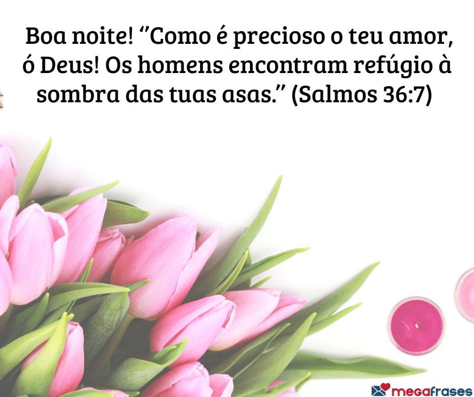 megafrases-mensagem-religiosa-evangelica-de-bom-noite-rosado