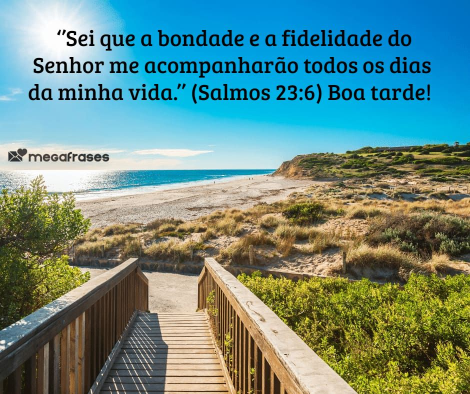megafrases-boa-tarde-com-flor-para-legenda-foto-facebook-zap-zap